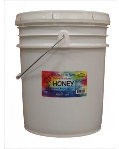 2 Gallon pail of wildflower honey